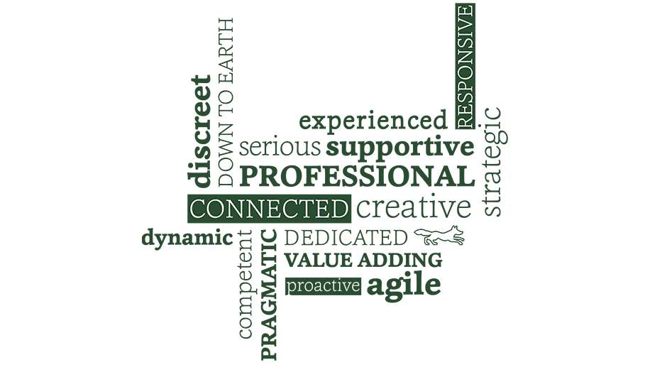 proactive, dynamic, competent, strategic, experienced, serious, creative, pragmatic, down to earth, professional, connected, dedicated, value adding, discreet, supportive, responsive, agile
